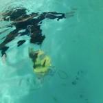 Teach Your Children to Swim