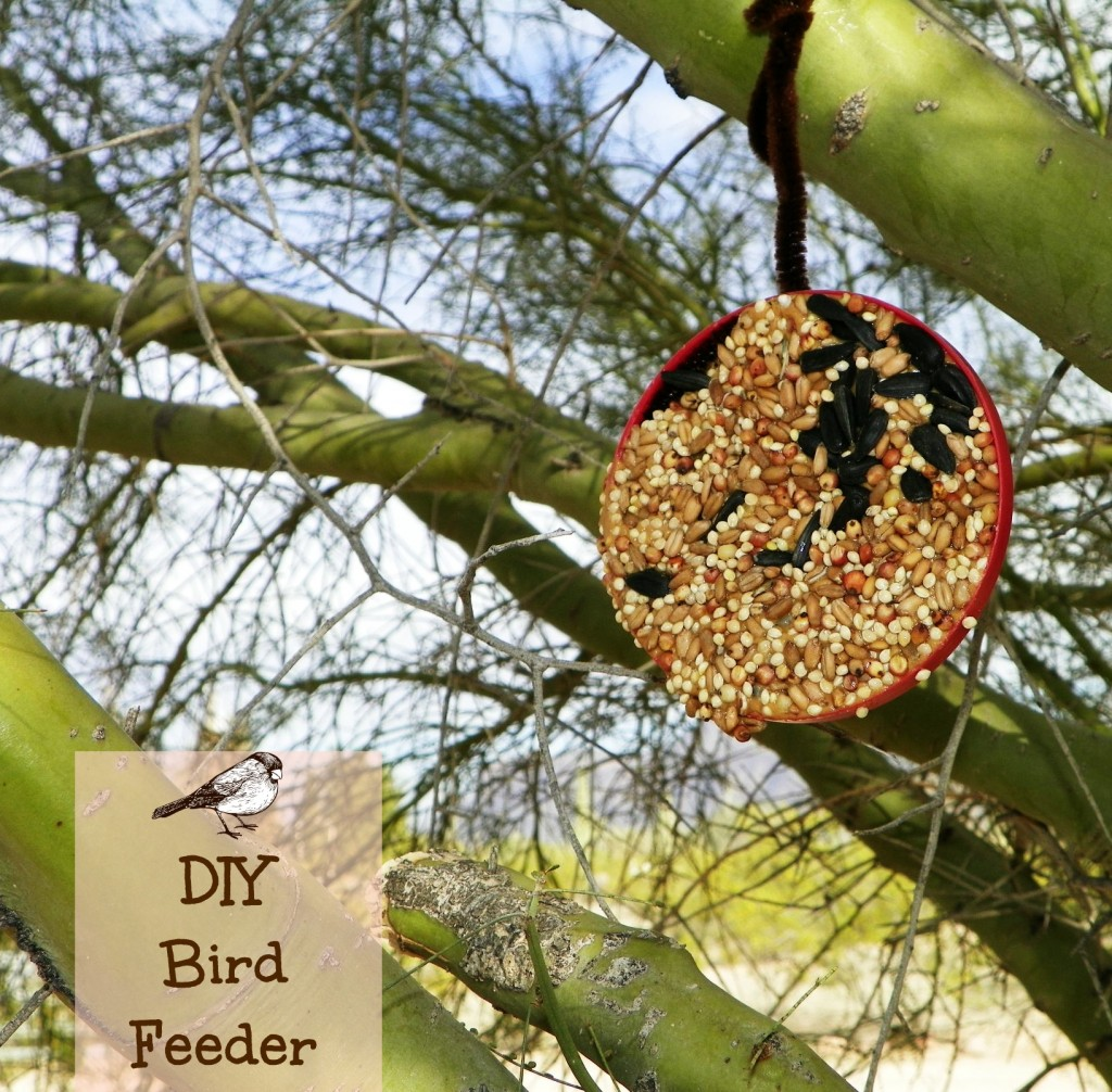 DIY Bird Feeder by Celebrating Family. Perfect for Scouts, birthday parties, or just for fun.