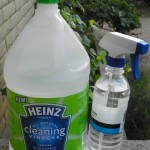 How I Clean Naturally With Non-Toxic #HeinzVinegar