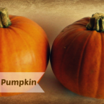 How to Steam a Pumpkin (Never Buy Canned Again!)