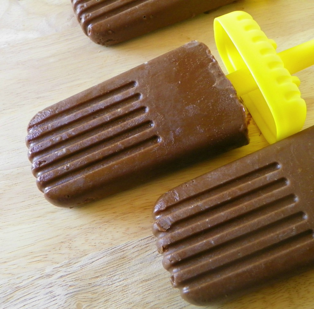 Vegan pudding pops (can also be made with dairy)
