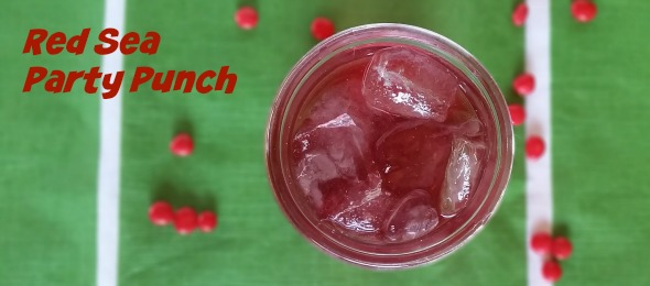 Red Sea Party Punch
