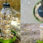 DIY Bird Feeder: Up-Cycle Tutorial