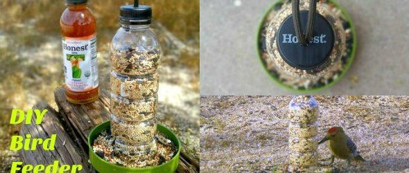 DIY Bird Feeder: Up-Cycle Tutorial