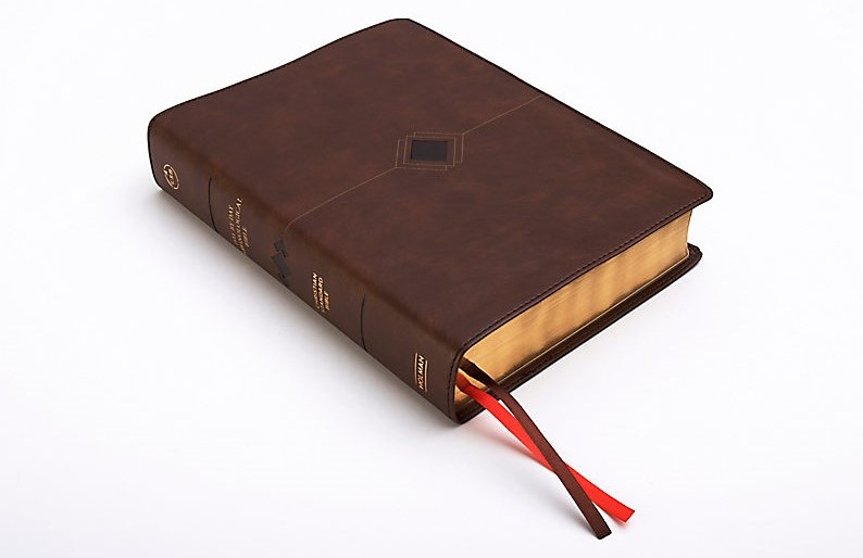 theCSB (Christian Standard Bible) Day-by-Day Chronological Bible which features a narrative approach to the Bible. This Bible is arranged into a fresh chronological reading plan with daily readings guided by Dr. George Guthrie.