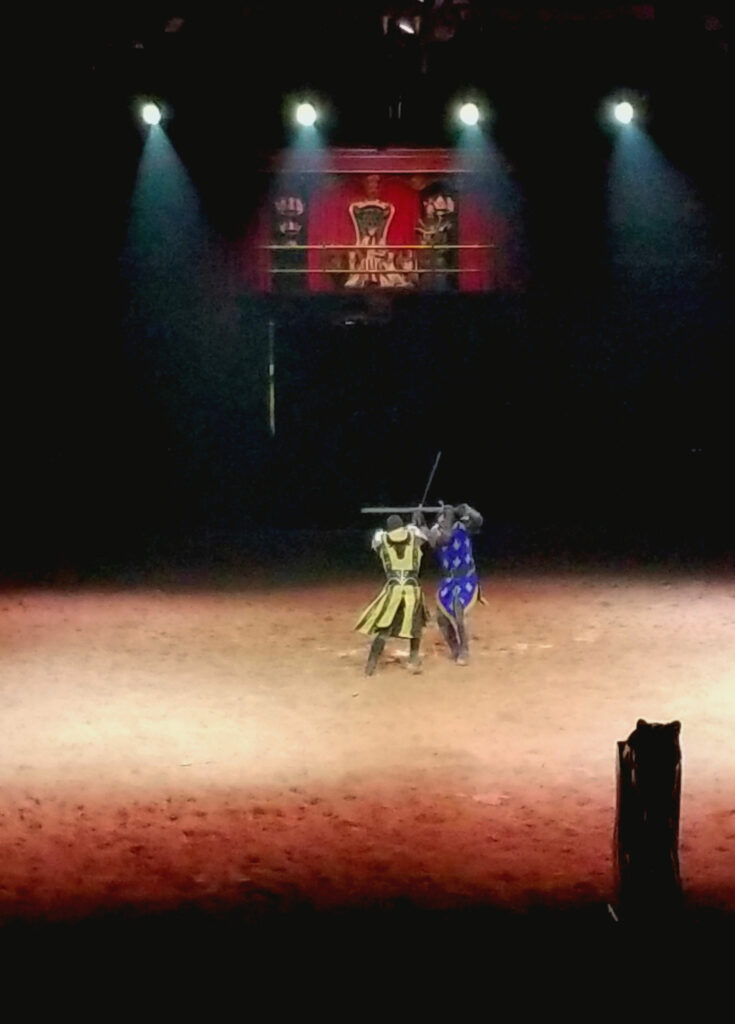 Knight Fight #MTCelebrate